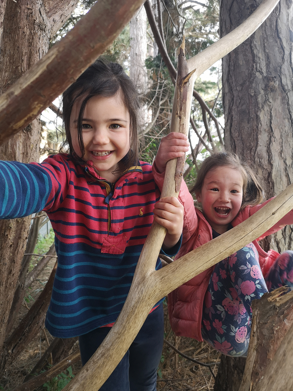 Girls In Tree